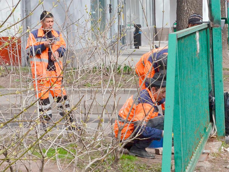В Москве за 2020 год число трудовых мигрантов снизилось на 40%, что отразилось на временных работах по уборке города