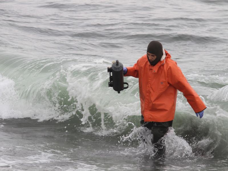 Две группы исследователей с берега и с воды изучили акваторию Авачинской бухты в Камчатском крае, где по неизвестной причине произошла массовая гибель морских животных