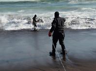 Ученые предложили отказаться от версий, которые объясняют гибель животных в прибрежной акватории Тихого океана сейсмической активностью, а также техногенными и радиационными причинами