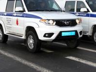 Запрыгнувший на полицейскую машину безработный получил пять суток