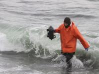 В камчатской Авачинской бухте на глубине 10-15 метров мертвы 95% живых организмов