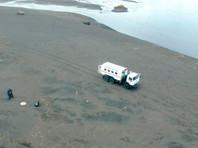 Загрязнение, водоросли, вулканы: губернатор Камчатки назвал три версии массовой гибели животных на побережье