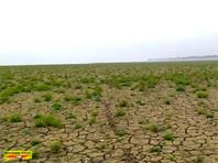 В Краснодарском крае нет лишней воды  для Крыма, признали ученые
