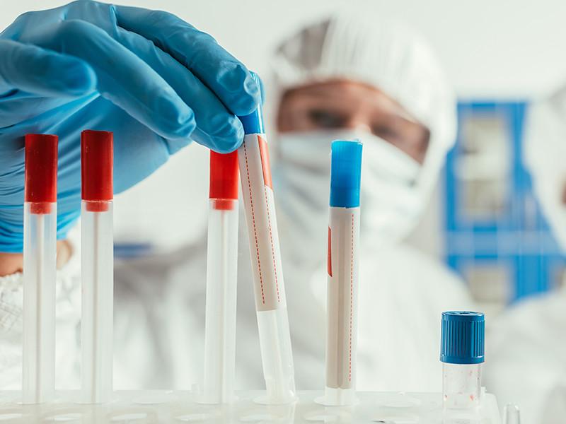 Вирусологи рассказали о неопасных мутациях коронавируса, выявленных в 13 регионах