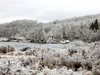 Ледяной дождь со снегом и ураганный ветер повредили сети электроснабжения в Приморском крае, наиболее сильно пострадали Владивосток и Артемовский городской округ