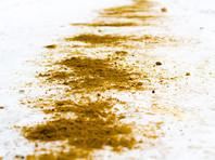 В Иркутской области посыпали дорогу песком с человеческими костями