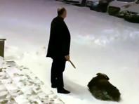 """В Челябинске полиция составила протокол из-за """"религиозного свадебного обряда заклания барана"""""""