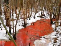 В Карелии обнаружили реку из крови, потрохов  и рыбьего жира