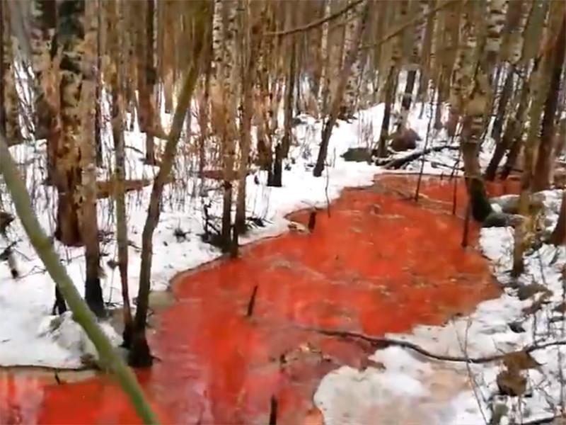 В Карелии около поселка Попов Порог местные жители обнаружили реку из крови