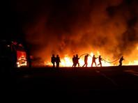 Камыш горит в анапских плавнях. Так на Кубани каждый год (ВИДЕО)
