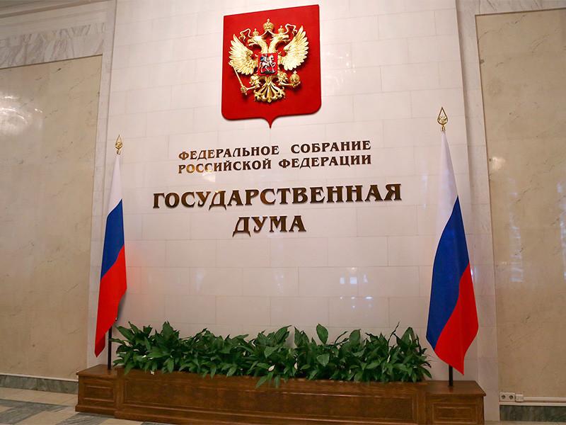 Комитет Госдумы по информполитике проанализирует фейки, появившиеся в соцсетях во время и после проведения протестных акций 23 января и подготовит по ним итоговый отчет