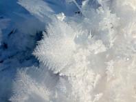 На следующей неделе в московском регионе ударят морозы - в ночное время температура может достичь минус 27 градусов по Цельсию