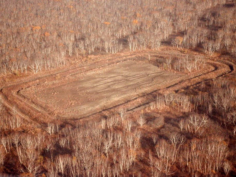 The environmental organization Greenpeace appealed to the Prosecutor General of Russia Igor Krasnov with a requirement to check the Kozelsky landfill of pesticides and pesticides in the Kamchatka Territory for compliance with environmental legislation