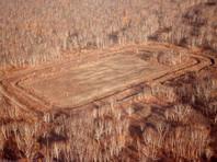 Greenpeace обратилась к генпрокурору с требованием проверить Козельский полигон на Камчатке в связи с экологической катастрофой