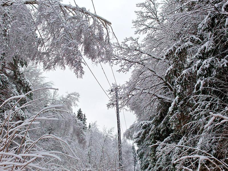В Дагестане в воскресенье из-за сильного ветра и снегопада было нарушено энергоснабжение, без электричества остались более 150 тысяч человек