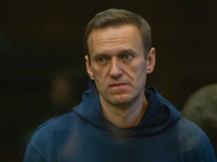 """Не менее пяти членов владимирской ОНК, которую Навальный назвал """"сборищем жуликов и лжецов"""", связаны с правоохранительной системой"""