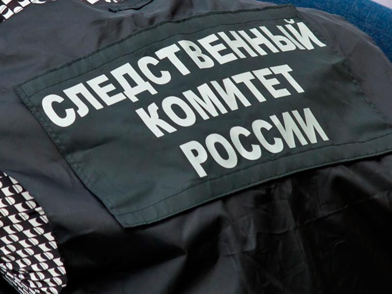 В Алтайском крае следователи устанавливают причины и обстоятельства смерти 12-летней девочки в городе Рубцовске