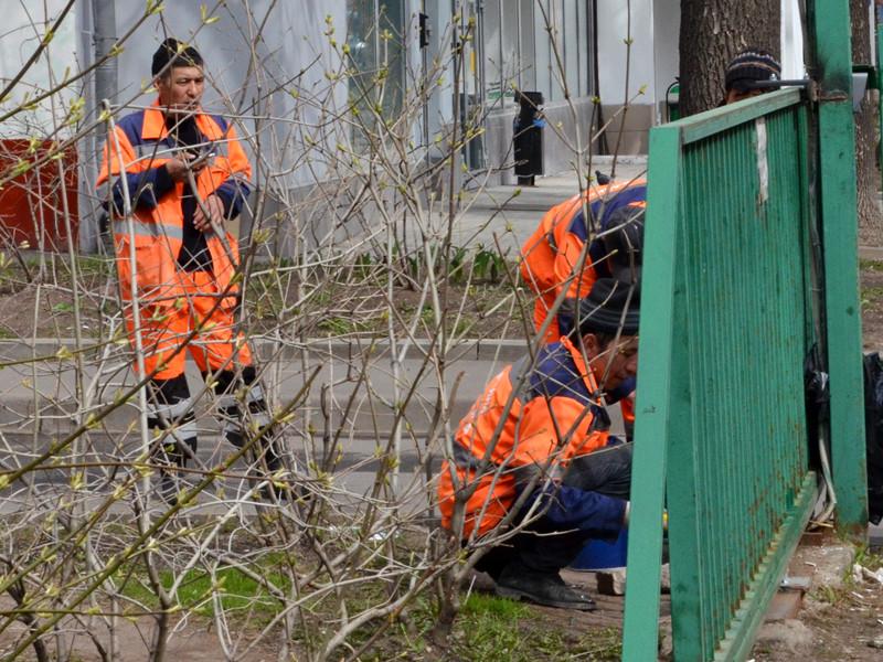 Страны СНГ должны до 15 июня забрать своих граждан, которые незаконно находятся в России, иначе Москва примет меры вплоть до закрытия границ