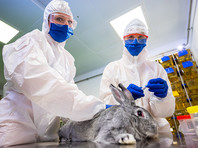 """Вакцина """"Карнивак-Ков"""" является первым в мире зарегистрированным препаратом против COVID-19 у животных"""