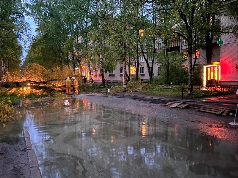 Санкт-Петербург, 18 мая 2021 года