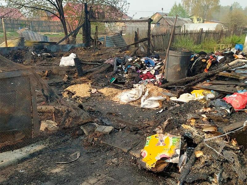 В Свердловской области во время пожара в частном приюте для собак в посёлке Билимбай погибло более 30 животных. Происшествие случилось в ночь с 9 на 10 мая