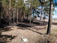 """Житель Иркутской области поджег лес, """"психанув"""" из-за того, что его никто не хотел подвезти (ВИДЕО)"""