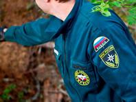 Поиски пропавшего в лесу министра здравоохранения Омской области Александра Мураховского, приостановленные накануне с наступлением темноты, возобновлены в понедельник утром
