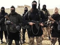 Завербованные на Западе сторонники ИГ стали проситься на родину