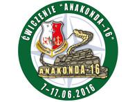 В Польше стартуют учения НАТО Anakonda - самые масштабные в истории