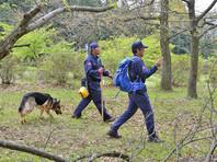 В Японии спустя неделю нашли непослушного мальчика, брошенного родителями в лесу