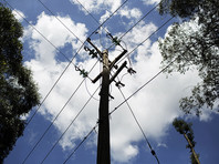 В Кении обезьяна пролезла на электростанцию, упала на трансформатор, обесточила всю страну и осталась жива