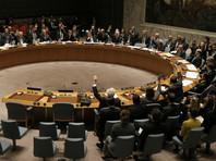 Египет заблокировал предложенное Вашингтоном заявление СБ ООН по Турции