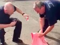 В американском Коннектикуте экстренные службы спасли застрявшую в стакане белочку (ВИДЕО)