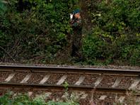 В Польше начали раскопки поезда с золотом нацистов