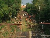 Во Франции 60 человек пострадали при столкновении поезда с упавшим деревом