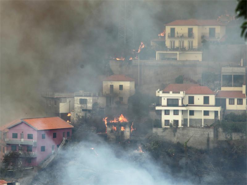 На португальском острове Мадейра лесные пожары подступают к столице: четверо погибших