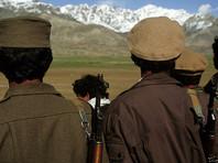 Талибы отпустили штурмана-россиянина и пакистанских военных