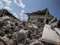 В Италии на пятый день после землетрясения под завалами нашлась живая кошка по кличке Радость