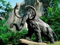Исследование причин вымирания мамонтов указало на опасность нехватки питьевой воды