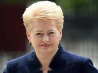 Глава Литвы призвала прекратить строить Белорусскую АЭС, так как она угрожает странам Балтии