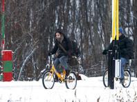 "Норвегия отодвинет ""антимигрантский"" забор на 15 сантиметров от границы с Россией"