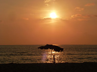 В Таиланде закрывают пляжи из-за нашествия ядовитых медуз