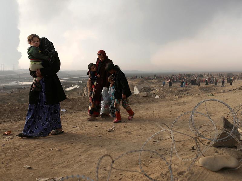 """Всемирная организация здравоохранения (ВОЗ) при ООН подготовила группу из 90 иракских медиков на случай применения террористами из группировки """"Исламское Государство"""" (запрещена в РФ) химоружия в иракском городе Мосул"""