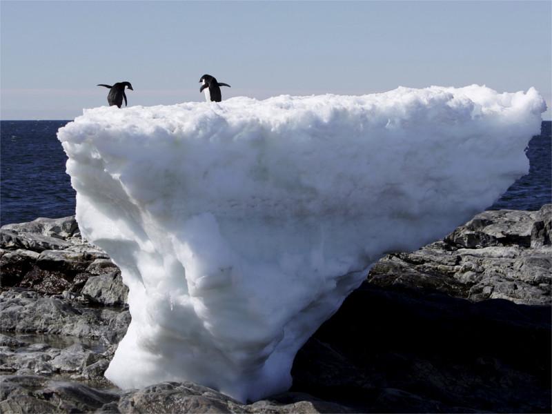 В Антарктике создадут крупнейшую мировую морскую природоохранную зону