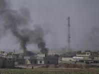 В ЕС опасаются возвращения боевиков в Европу после изгнания из Мосула