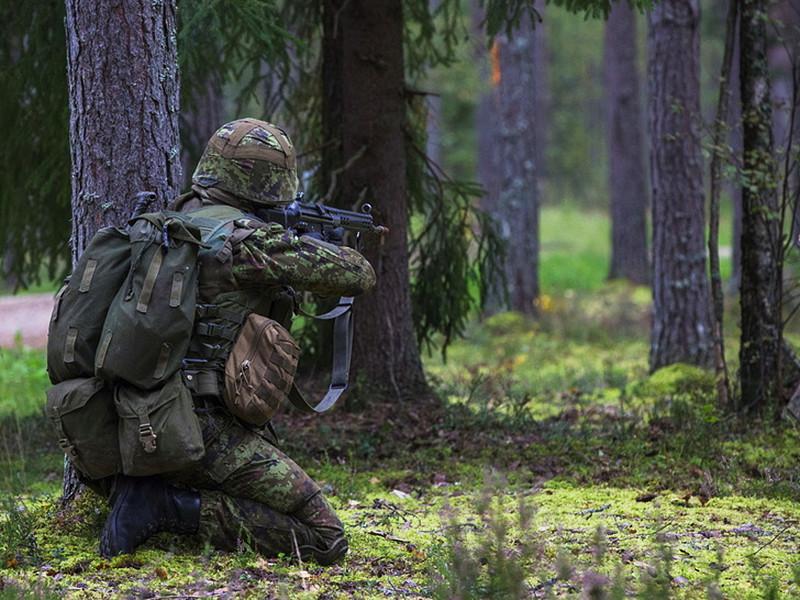 Лига обороны Эстонии, в которую входит около 25,4 тысячи человек, организует специальные мероприятия для своих добровольцев, во время которых проводятся различные тренировки, обучающие эстонцев быть партизанами