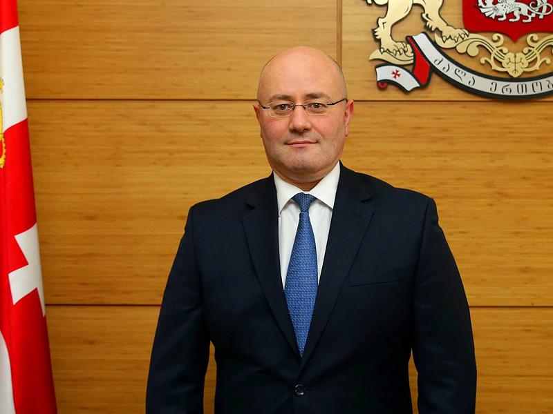 Новый глава министерства обороны Грузии Леван Изория объявил о планах восстановить обязательный военный призыв, отмененный в июне его предшественницей Тинатин Хидашели