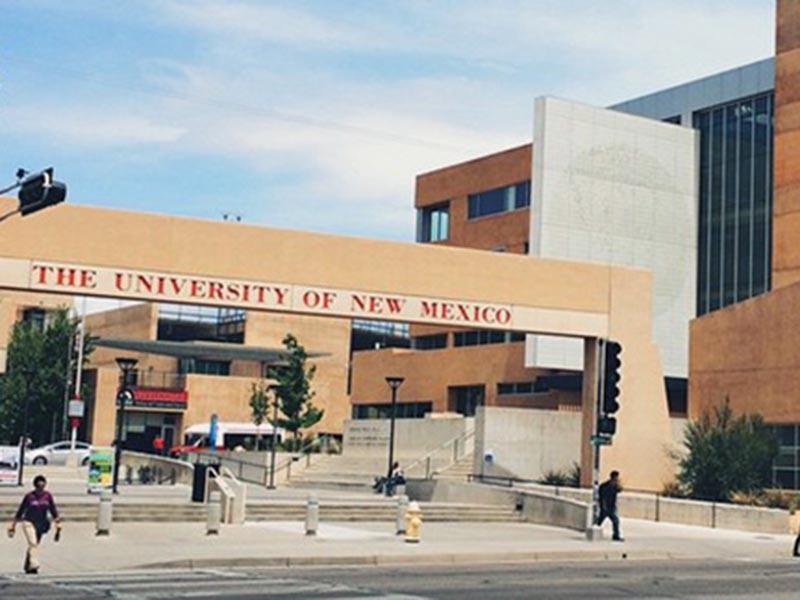 В США Университет Нью-Мексико раскритиковали за конференцию о снежном человеке
