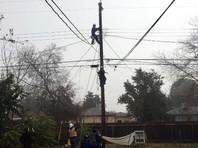 В США энергетики обесточили 250 домов, чтобы спасти кота, застрявшего на столбе ЛЭП (ВИДЕО)