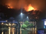 Лесные пожары в Теннесси унесли жизни трех человек и уничтожили сотни домов